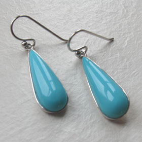 Turquoise Earrings Acacia